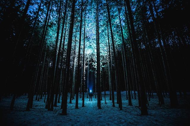 HISTORIX-MYSTERY-PARCOURS – nachts im Wald Rätsel lösen. Der neue Gruselspaß von Historix-Tours